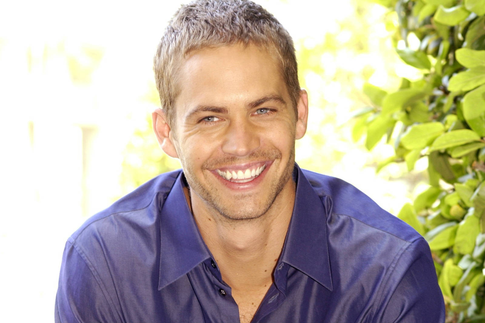 Paul Walker Beautiful Wide Smile