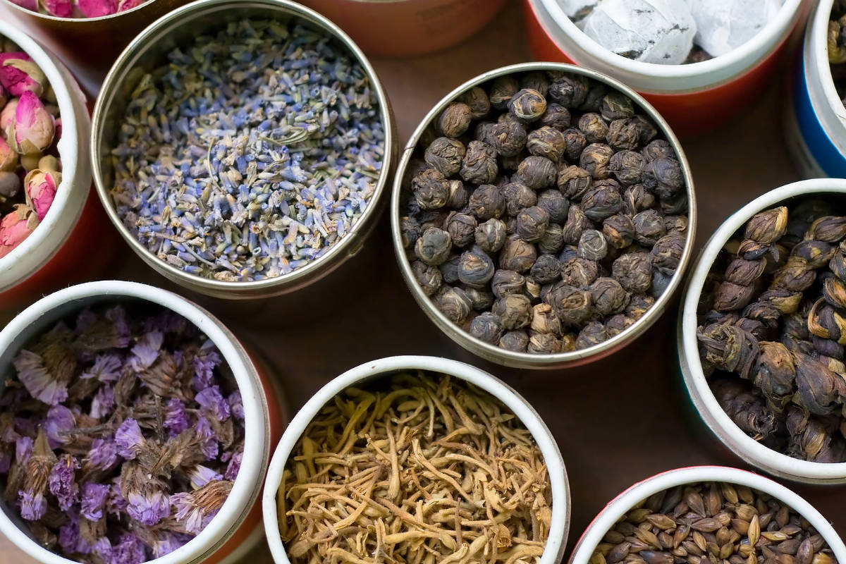 6 most wanted chinese herbs that you need to know