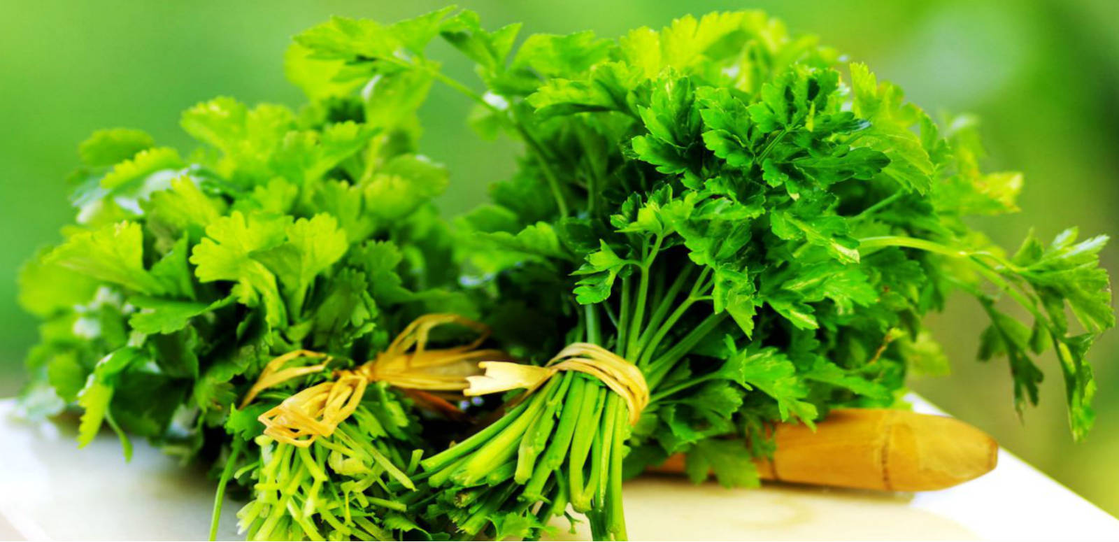 Parsley Kills Lung Cancer Cells