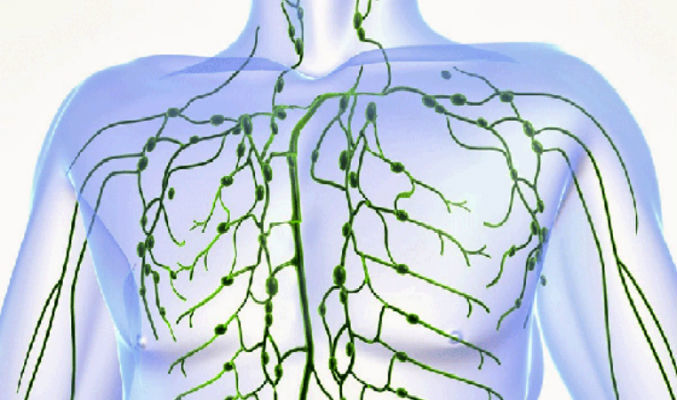 Cleanse Your Lymphatic System in 3 Days and Stay Healthy For a Year