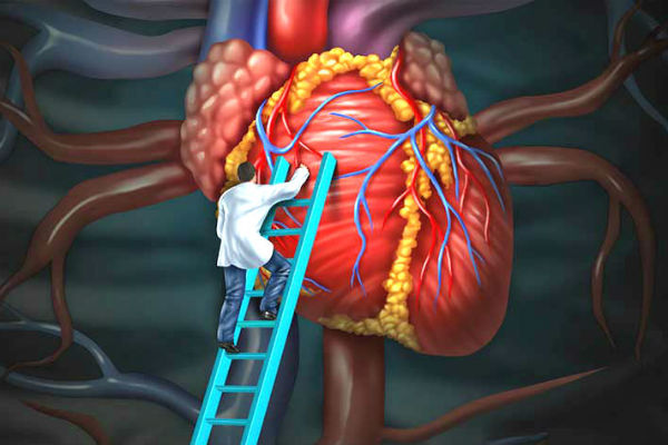 Reduce The Risk of Heart Disease Featured