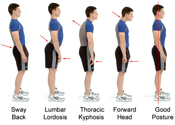 5 Tips for Better Posture and Less Back Pain