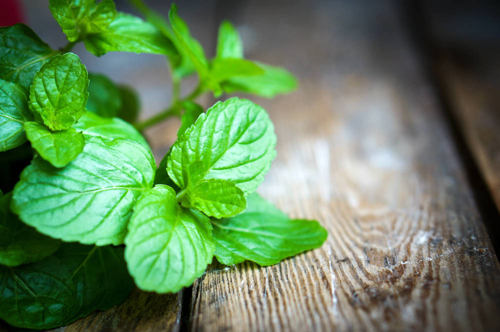 Beat Sugar Addiction in One Week with Peppermint