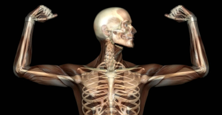 What Marijuana Can Do to the Broken Bones and Osteoporosis