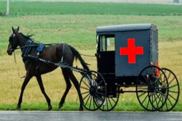 Amish Ambulance - Natural Remedies for Ear Infection