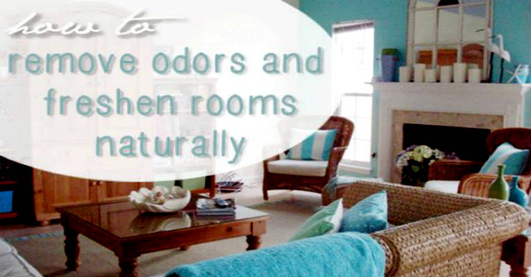 How To Remove Odors and Freshen Rooms Naturally