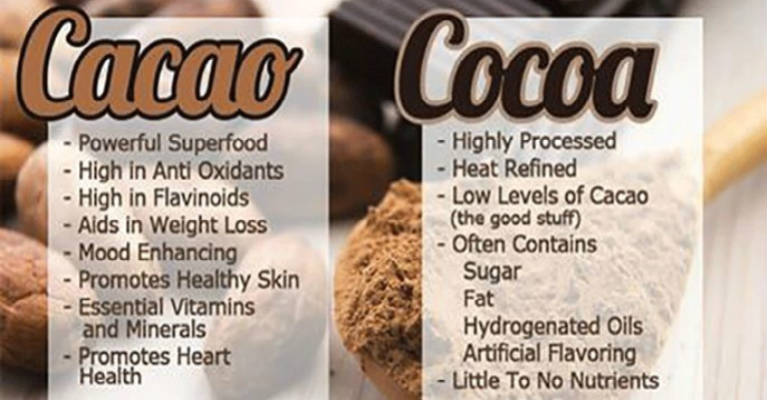 Is Your Chocolate Real - Cacao Vs. Cocoa - What You Need To Know