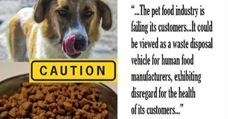 Toxic Pet Foods Full of GMOs and Diseased Meat