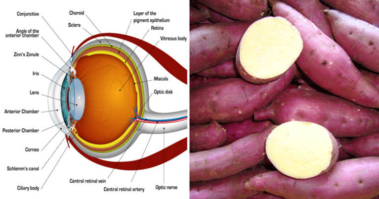 How To Use Sweet Potatoes for Weight Loss and To Prevent Blindness
