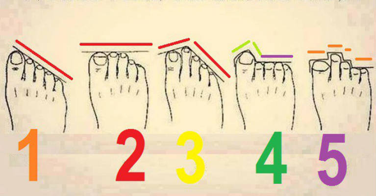 Image result for Here's What Shape and Length of the Toes Say About Your Future and Personality!