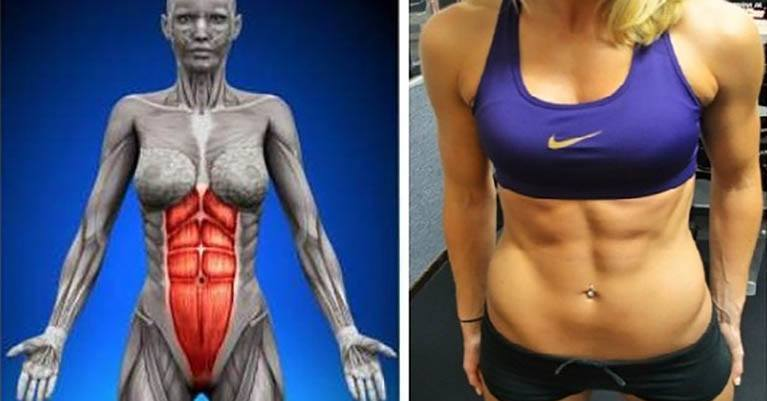 The Exercise More Efficient Than 1000 Abs: Get Flat Abdomen by Exercising 1 Minute a Day & For a Month