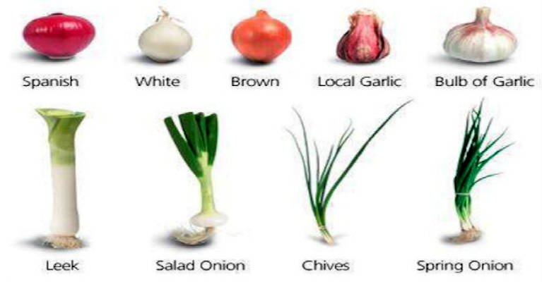 Many Types of Garlic and Their Amazing Effects on Our Overall Health!