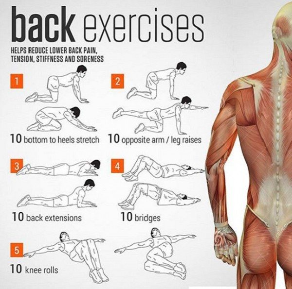 5 Minutes Daily of This Exercise and Your Back Will Be Healthy All Your Life! (VIDEO)