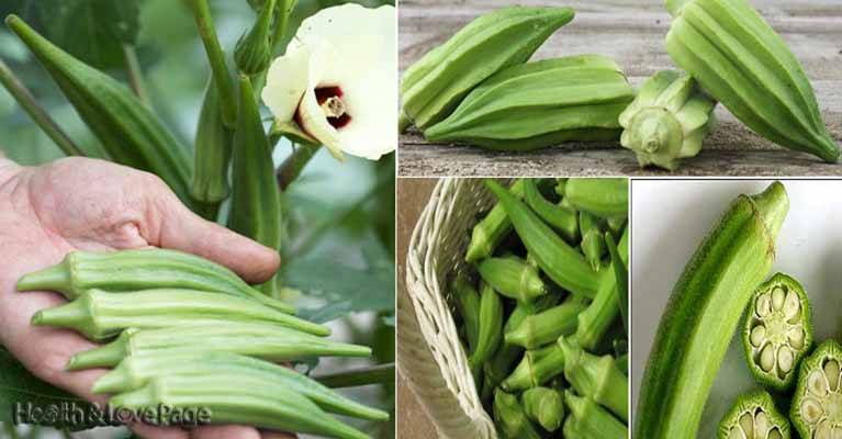 6 Little Known Reasons to Eat More Okra
