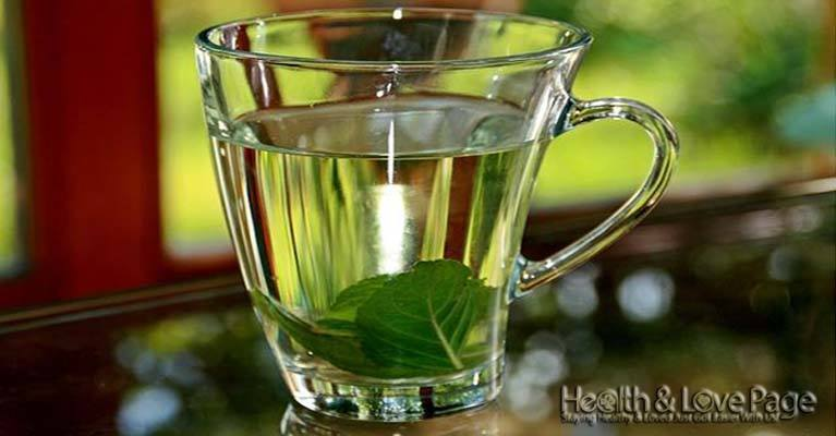 Improve Memory and Cognitive Function Drinking This Tea