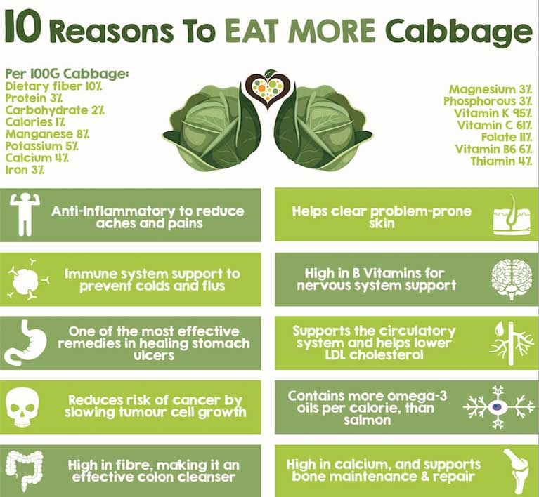 10 Excellent Reasons To Start Eating More Cabbage (Number 10 Will Shock You) 2