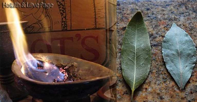 Burn A Bay Leaf In Your House. The Reason You'll Be Amazed!