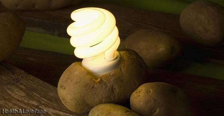 Light Your Room For A Whole Month By Using A Potato!!! – VIDEO
