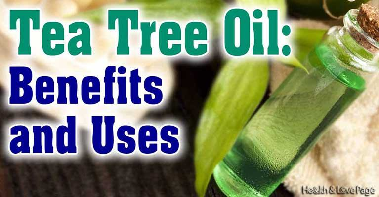 The Very Best Antifungal, Antibacterial and Antiviral Tea Tree Oil Benefits and Uses