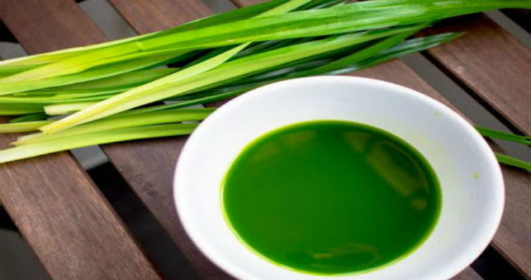 Pandan Leaves: Effective Remedy for Arthritis Symptoms