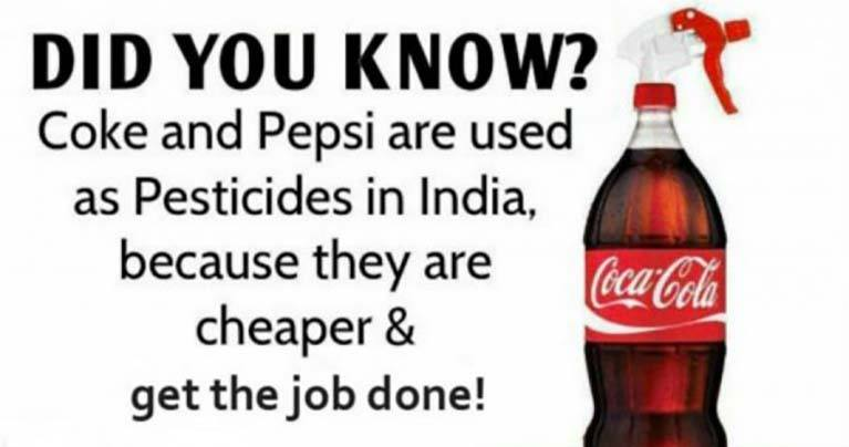 Pepsi And Coca-Cola Used as Pesticide in India Because They're Cheap and Get the Job Done!