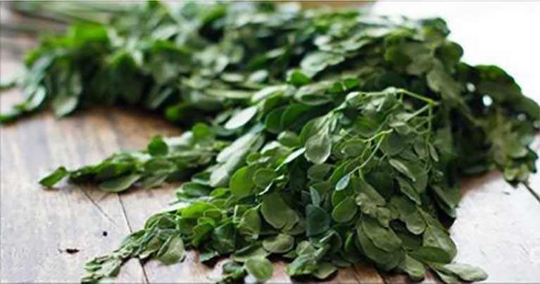 10 Incredible Health Benefits of Malunggay and the Juice Extracted from These Leaves