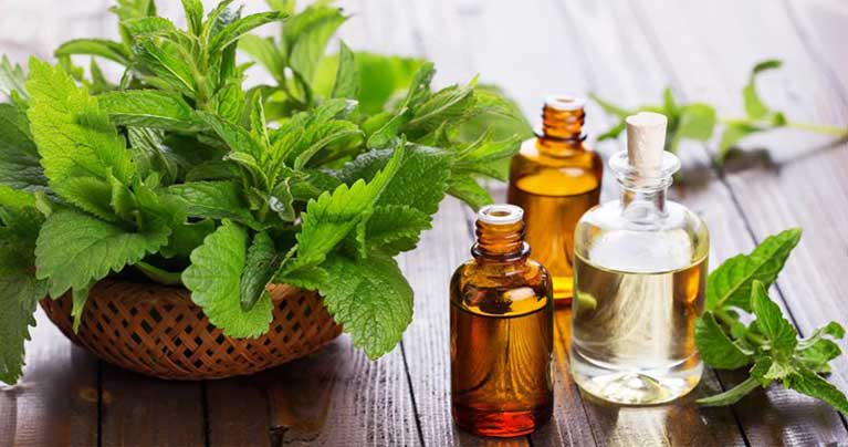 25 Ways to Use The Therapeutic Benefits of Peppermint Oil