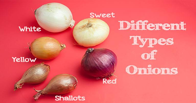 Here's The Right Way to Use Each Type of Onion (Video)