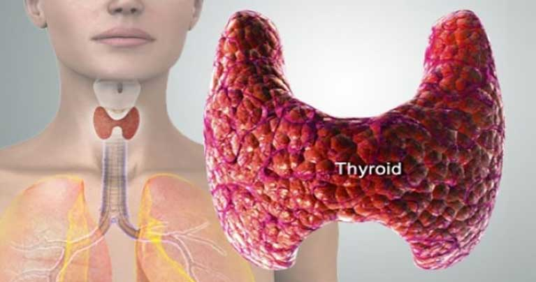 What-Endocrinologists-Won't-Tell-You-about-Thyroid-and-Essential-Oils